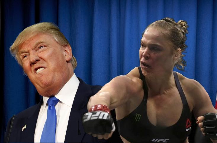Trump Rousey punch