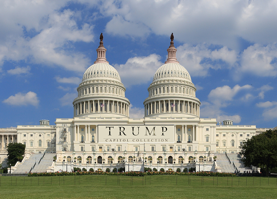 "Trump's Proposed Purchase,  Redesign and Rebranding of the Capitol Called ""Gross Violation"" of Emoluments Clause"
