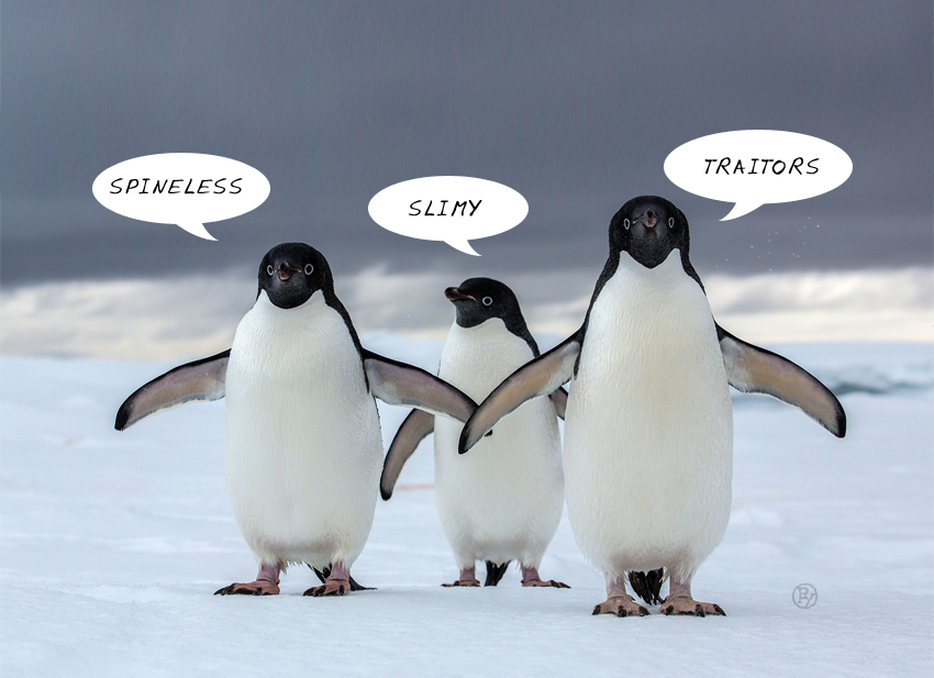 "LePew Poll Finds 99.4% of the World's Penguins Believe Republicans Are ""Spineless"""