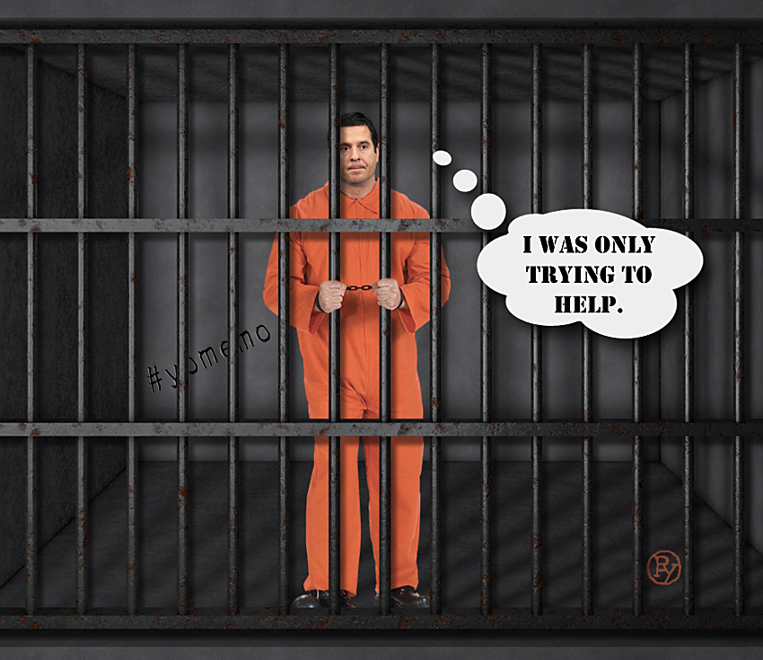 Devin Nunes Jailed for Extreme Stupidity