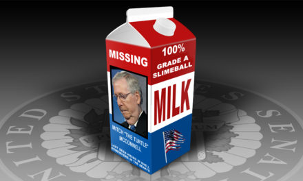 Nationwide Search Launched for Mitch McConnell
