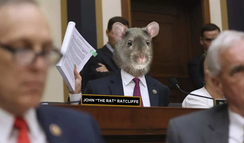 """Irony Free Zone: Trump Calls Baltimore """"Rat-Infested"""" and then Nominates John Ratcliffe"""