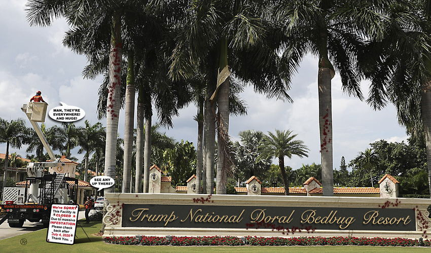 BedBugs, Now Unionized, Refuse to Leave Doral