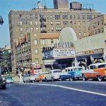 """Trump Claims Credit for Keeping His Queens Neighborhood """"Fire Free"""" During the 1950s"""